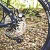 BUCO Cairnbrogie MTB Rides 2019